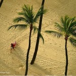 plus-belles-images-nature-national-geographic-wallpaper-10