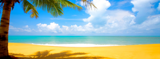 plage soleil couverture facebook cover 550x203 Couvertures pour Facebook   Cover du Profile
